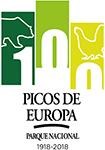 Centenario Picos